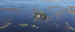 Campos inundados Junín