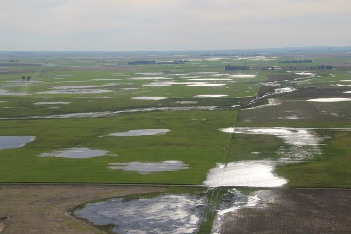 Campos inundados loberia (1)