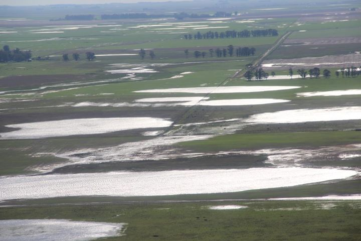 Campos inundados loberia (10)