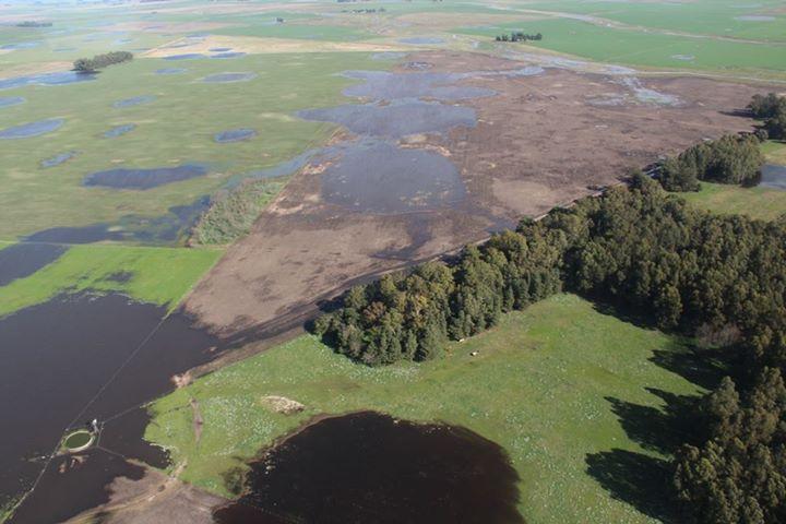 Campos inundados loberia (9)
