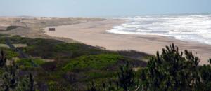 playas arenas verdes