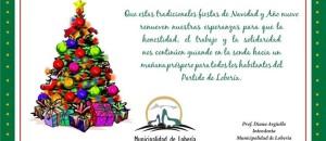 tarjeta municipaldiad fiestas